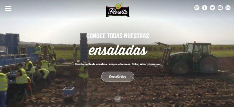 diseño de sitio web de florette en wordpress
