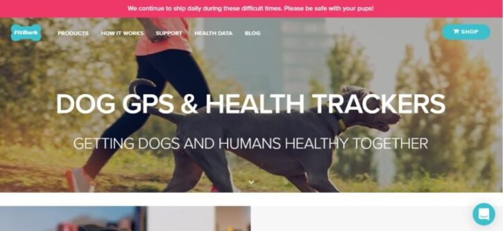 diseño de sitio web wordpress de marca fitbark
